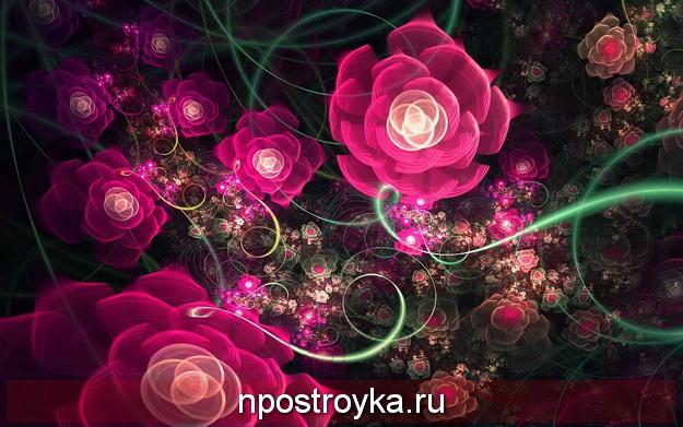 красивые фото на заставку телефона